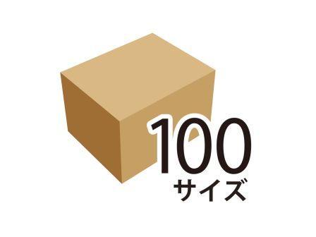 100サイズのダンボール箱