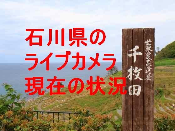 新潟 ライブ カメラ 海